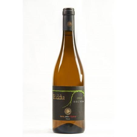 Grillo 2017 D.O.C. SICILIA bottiglia da 0,75lt - RIDDU